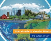 bioeconomy_in_european_way