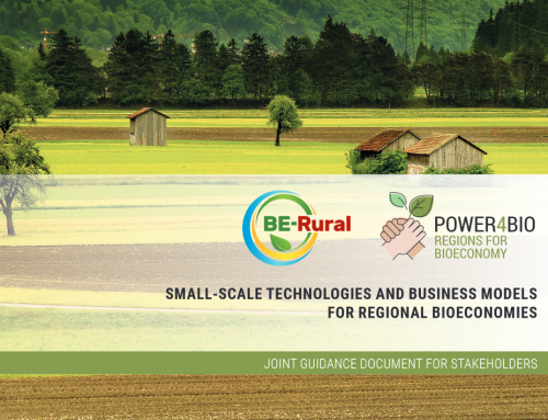 BE-Rural and POWER4BIO Joint Guidance Document for Stakeholders