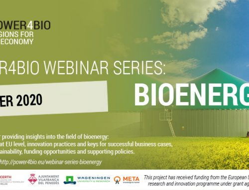 POWER4BIO webinar series: Bioenergy