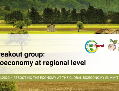 POWER4BIO and BE-Rural organised joint breakout session at GBS2020 on regional bioeconomy