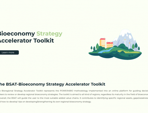 Public deliverable D2.5 explains the development and functionality of the POWER4BIO Bioeconomy Strategy Accelerator Toolkit (BSAT)