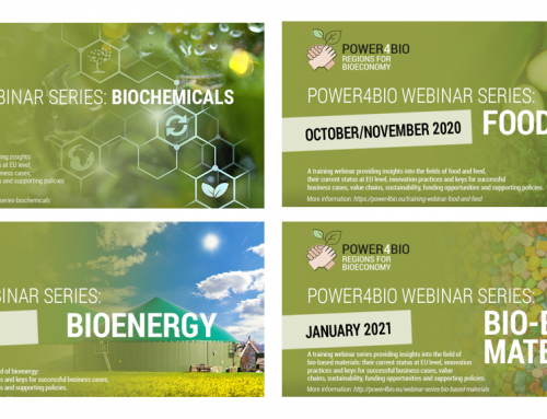 New public deliverable: Training design and materials for increasing the bioeconomy capacity of regional stakeholders